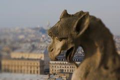 La Francia - Parigi - Notre Dame Fotografia Stock Libera da Diritti