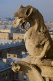 La Francia - Parigi - Notre Dame Fotografie Stock