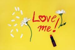 La frase: ámeme, escrito con el lápiz labial Fotografía de archivo