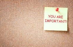 La frase usted es importante escrito sobre nota pegajosa. sitio para el texto. Imagen de archivo libre de regalías