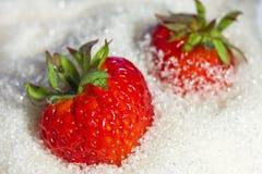La fresa está en azúcar Imagen de archivo libre de regalías