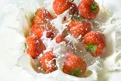 La fresa roja da fruto cayendo en la leche imagen de archivo
