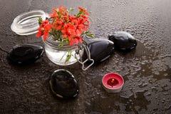 La fresia Laxa del rojo anaranjado florece en el envase de cristal con masaje Foto de archivo