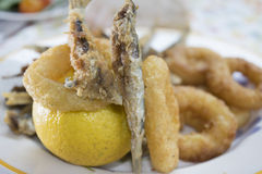 La frittura mista del pesce con le acciughe ed il calamaro suona Fotografia Stock