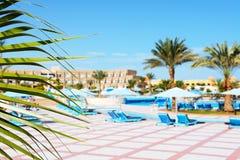 La fronda de la piscina de la palma y en el hotel de lujo Imagen de archivo libre de regalías