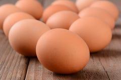 La fronte Eggs il primo piano Immagini Stock