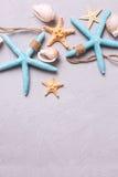 La frontera de artículos marinos en gris tetured el fondo de la pizarra Imagen de archivo libre de regalías