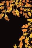 La frontera de Brown y del oro del árbol del otoño se va en la derecha y el lado derecho superiores en negro, para la frontera de ilustración del vector