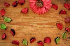 La frontera de lápices de madera, los pétalos secos y el crisantemo florecen en fondo de madera marrón Visión superior Fotos de archivo