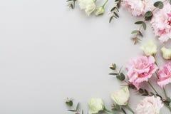La frontera floral de flores hermosas y del eucalipto verde se va en la opinión de sobremesa gris Composición plana de la endecha imágenes de archivo libres de regalías