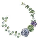 La frontera floral de la acuarela con el bebé, eucalipto del dólar de plata se va y succulent Guirnalda floral pintada a mano con stock de ilustración