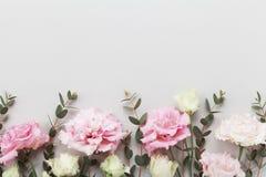 La frontera floral hermosa de flores en colores pastel y del eucalipto verde se va en la opinión de sobremesa gris estilo plano d imágenes de archivo libres de regalías