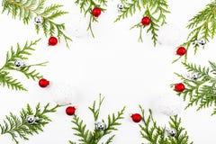 La frontière arquée large de Noël sur le blanc, composé de sapin frais s'embranche photographie stock