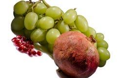 La fruta fresca para usted Foto de archivo