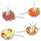 La fruta jugosa se lava debajo de la agua corriente Colección de cerezas del lavado del colador, fresas, frutas, verduras Fruta f ilustración del vector