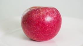 La fruta roja madura entera de la manzana en la placa blanca gira metrajes