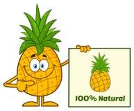 La fruta sonriente de la piña con verde hojea carácter de la mascota de la historieta que señala a una muestra natural del 100 po Fotografía de archivo libre de regalías