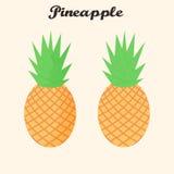 La fruta tropical de la piña del vector fijó en estilo plano Imagen de archivo libre de regalías