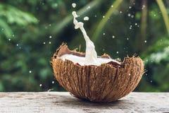 La fruta y la leche del coco salpican dentro de él en un fondo de una palmera fotografía de archivo libre de regalías