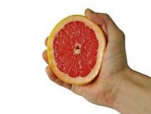 La frutta Fotografia Stock Libera da Diritti