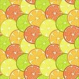 la frutta affetta il fondo illustrazione di stock