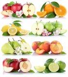 La frutta arancio delle arance delle mele della nettarina del limone della mela di frutti si raccoglie Fotografie Stock Libere da Diritti