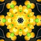 La frutta arancio sistemata nella progettazione del cerchio del caleidoscopio, cerchio arancio mangia il fondo dell'alimento per  Immagini Stock