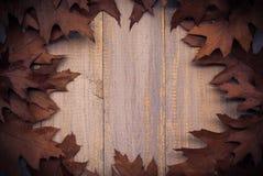 La frutta d'annata di autunno della composizione ha sistemato il backgrou di legno del cerchio Fotografia Stock Libera da Diritti