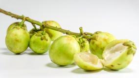 La frutta di Longkong, di Langsat o di lanzones è endemica al guda Gadu/di Sud-est asiatico, immagine stock libera da diritti