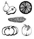 La frutta e le verdure doodle l'insieme Fotografie Stock Libere da Diritti
