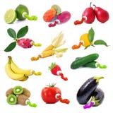 La frutta e le verdure gradiscono un tubo del fondo di bianco del oin della pittura Immagini Stock