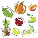 La frutta e le verdure hanno messo le icone Immagini Stock Libere da Diritti