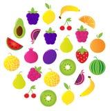 La frutta fresca & le bacche circondano isolato su bianco Fotografia Stock Libera da Diritti