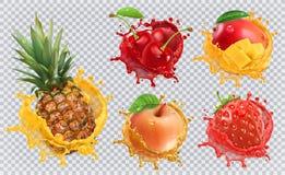 La frutta fresca e spruzza, insieme dell'icona di vettore 3d Fotografia Stock Libera da Diritti
