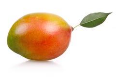 La frutta matura del mango ha isolato fotografia stock