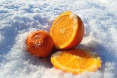 La frutta nella neve Fotografia Stock
