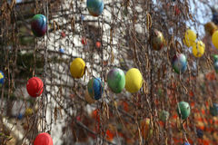 La fuente adornó los huevos de Pascua/los huevos de Pascua adornados bien Imagenes de archivo