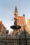 La fuente de Neptuno y el ayuntamiento en Gdansk Fotos de archivo libres de regalías