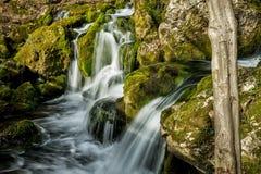 La fuente del río que hace las cascadas sobre rocas cubrió ingenio Fotos de archivo