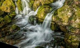 La fuente del río que hace las cascadas sobre rocas cubrió ingenio Fotos de archivo libres de regalías