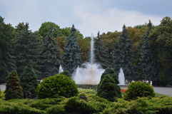 La fuente en el parque imagenes de archivo