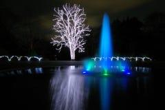 La fuente y el árbol están iluminados Fotografía de archivo