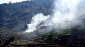 La fumée se lève des champs Image stock
