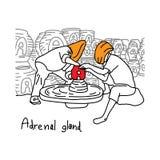 La funzione della metafora della ghiandola surrenale è di produrre il horm dell'adrenalina illustrazione di stock