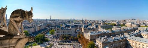 La gárgola mira el panorama de París Foto de archivo libre de regalías