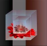 La géométrie de couleur Photographie stock libre de droits