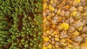 La géométrie en automne images libres de droits