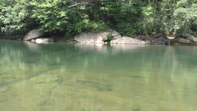La Géorgie, bancs à dossier pont le parc, casserole d'A à travers une rivière Chattahoochee calme et verte banque de vidéos