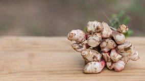 La galanga, maggior galanga, erba della Tailandia ha proprietà medicinali ed ingredienti di cottura, Fotografia Stock Libera da Diritti