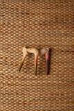 La galanga si pianta sulla carta da parati marrone che mostra la struttura del placemat del giacinto d'acqua secco tessuto immagini stock